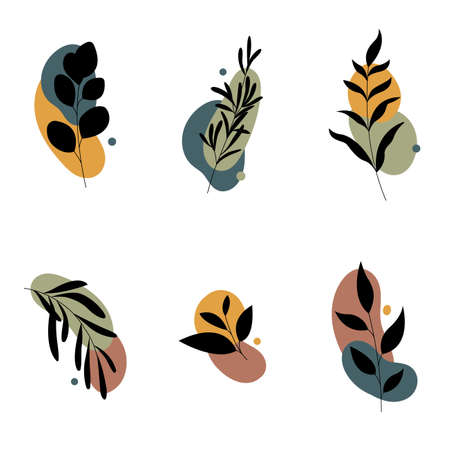 Set of abstract plants.Silhouette.Collection hand drawn, botanical and healing isolated plants.Herbs design template.Twigs and leaves with abstract colorful forms.Vector illustration. Illusztráció