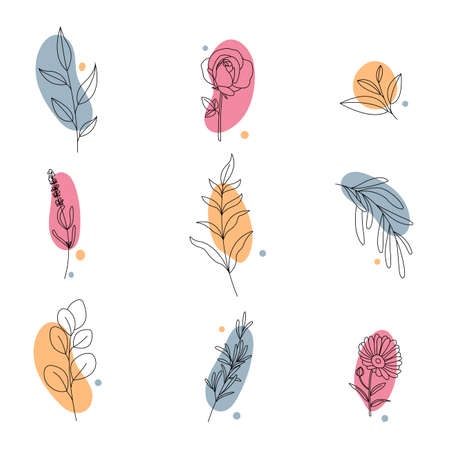 Set of abstract plants.Collection hand drawn, botanical and healing isolated plants.line art.Herbs design template.Twigs and leaves with abstract colorful forms.Vector illustration.