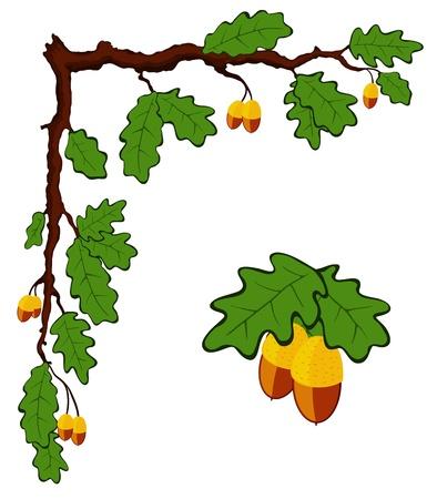 작은 숲: 잎과 도토리로 그린 오크 지점, 벡터 일러스트