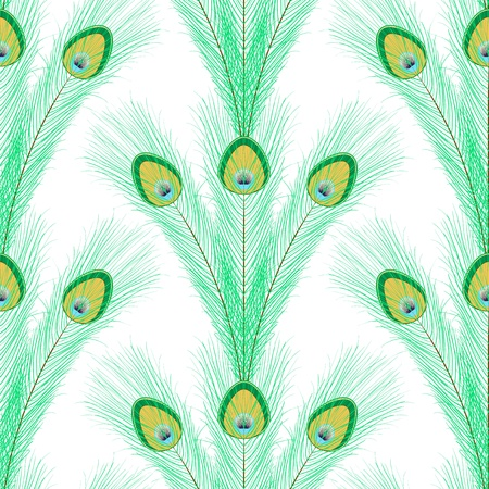 Seamless pattern with peacock feathers on white Vector