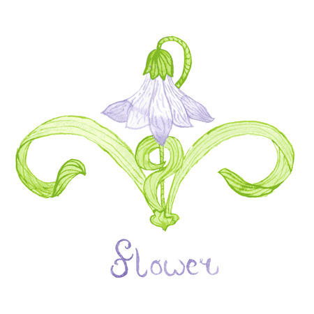 bellflower: Watercolor bellflower, Art Nouveau style Illustration