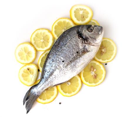 gilthead bream: Fresh gilt-head bream, dorado, on cutted lemon flat lay Stock Photo