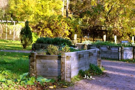 Autumn Garden bed wooden outdoor Stock Photo