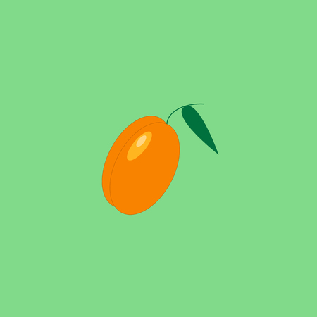 Yellow apricot on the neon green background