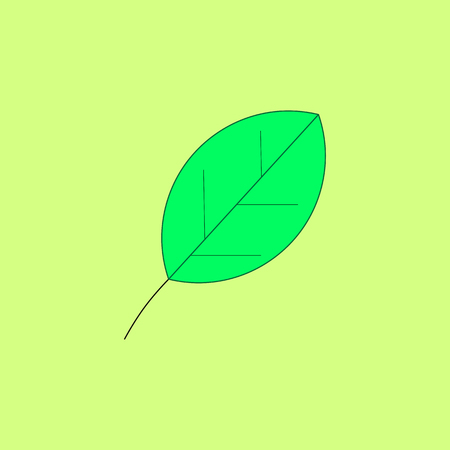 Green leaf on the yellow background