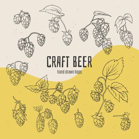 Craft beer hand drawn doodle style hops collection.