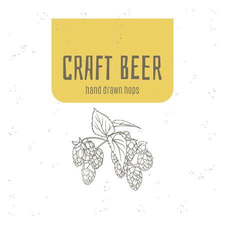 Craft beer hops hand drawn logo, poster, flyer, banner etc.