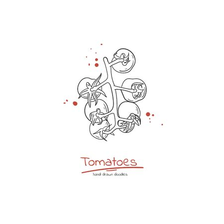 Cherry tomato branch doodle style hand drawn organic food label, flyer, logo, poster or sale banner.