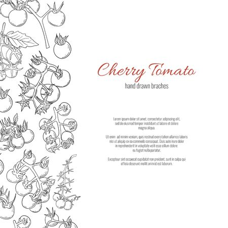 Cherry tomato branches hand drawn cartoon doodle style page template.