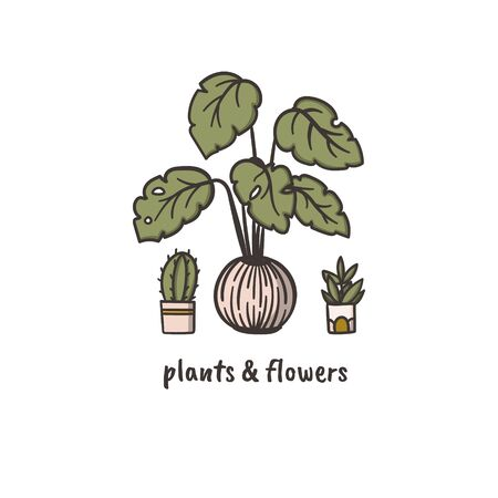 Cactus, philodendron and succulent doodle style hand drawn logo concept for plants and flowers delivery service. Stock vector
