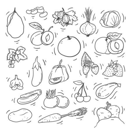 Doodle hand drawn fruits and vegetables on white background