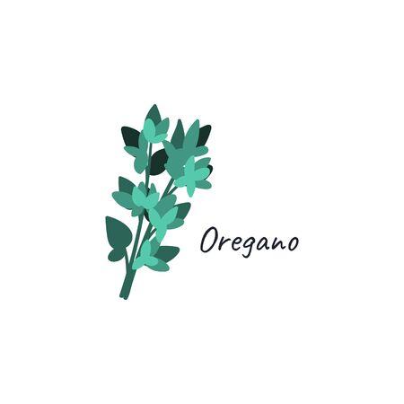 Oregano hand drawn doodle. Culinary herbs logo cartoon flat style concept. Ilustração