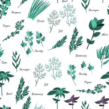 Culinary herbs seamless pattern. Cartoon flat style. Doodle hand drawn background for textile, packaging, wrapping.