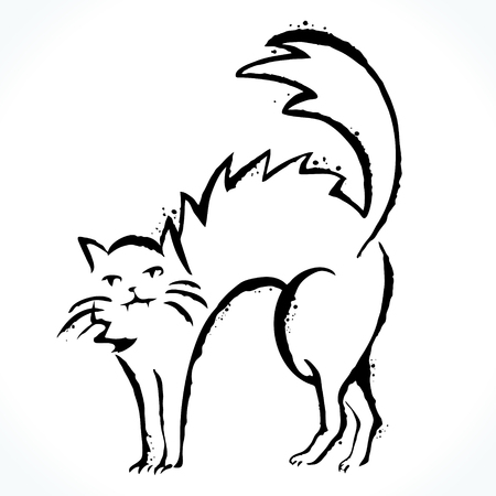 Hand drawn cat isolated on white background