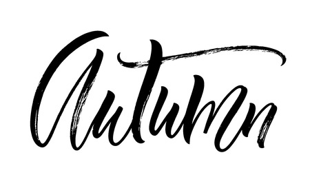 Autumn lettering. Handwritten modern calligraphy, brush painted letters. Vector illustration. Template for poster, flyer, greeting card, invitation and various design products