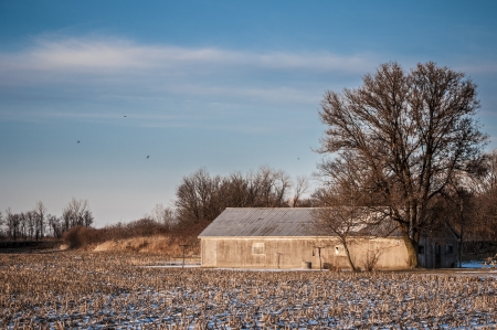 Barn house on the corn field durinf winter photo