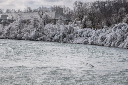 Niagara falls river banks during winter season photo