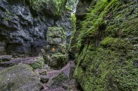 Path below the crevis of scenic cave, collingwood ontario photo