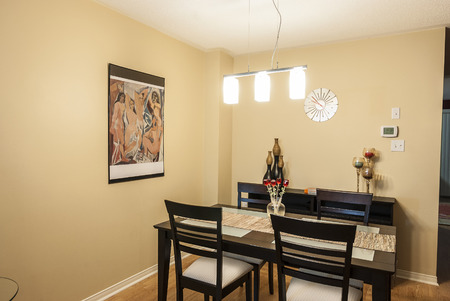 Brightly lit modern dining room
