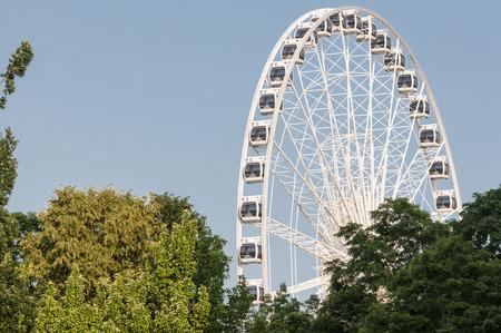 Ferris wheel with foliage on the background photo