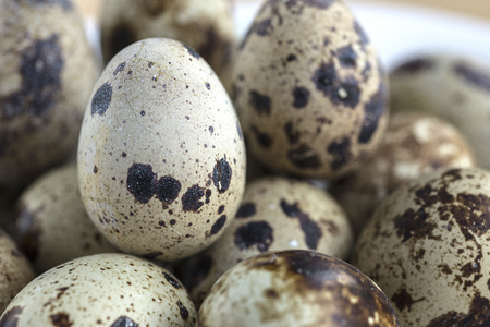 lose up: A lose up shot bunch of quails eggs.