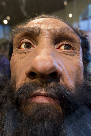 A wax face exhibit of a prehistoric man in the museum