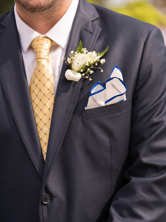 corsage: A torso of a man in suit with corsage.
