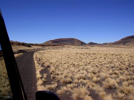 La Payunia로가는 길 스톡 콘텐츠