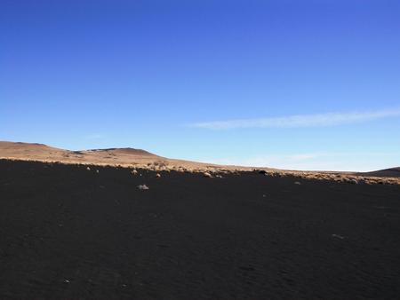 검은 사막 La Payunia