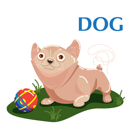 Dog plays with ball on grass. Educational card helps the speech therapist for preschoolers for children and baby in the cartoon style about home animals, pets. Isolated Flat illustration. Ilustrace