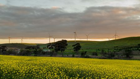 wind farm: Caledon Wind Farm Stock Photo