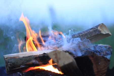 glut: flames on the wood on the background of the dawn sky