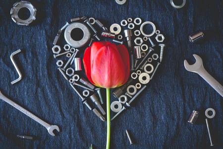 Red tulip surrounded byheartvmade of nuts and tools