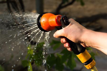 Riego equipo de jardinería - mano sostiene la manguera de rociadores para las plantas de riego. Jardinero con el riego y el agua de la manguera del rociador en el vegetal.
