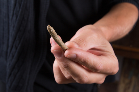 drug user: Marijuana joints and buds in the mans hand. Man offering drugs