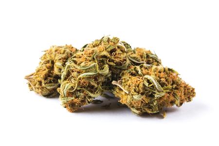 spliff: Marijuana buds isolated on white background. Closeup