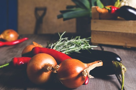 dikon: Different kind of local vegitables on the wooden rustic table. Organic healthy food concept Foto de archivo