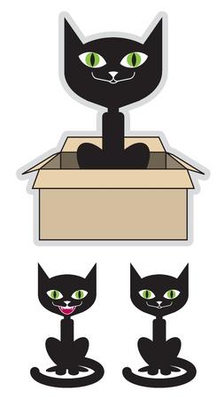 상자에 검은 고양이