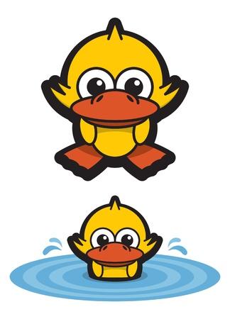 연못에 재미 오리 수영 일러스트