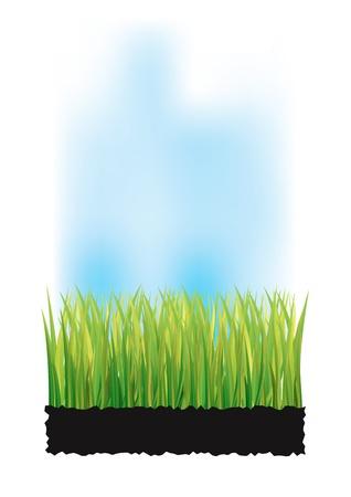 peat: grase Illustration