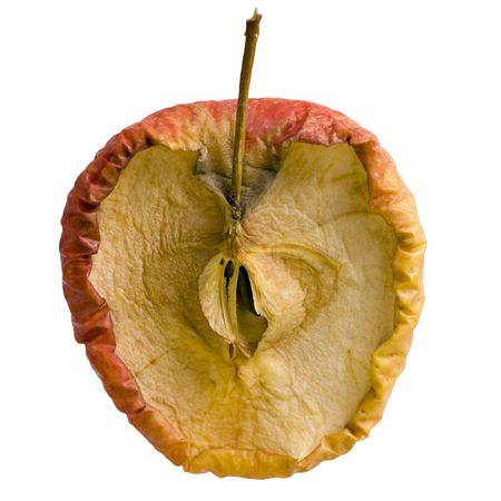 Apple Slice in Decay - Isolated photo