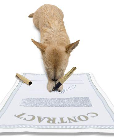 signing: Dog - firmare un contratto Archivio Fotografico