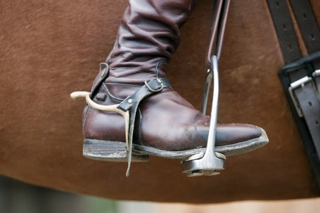 Horse - Riding Boot