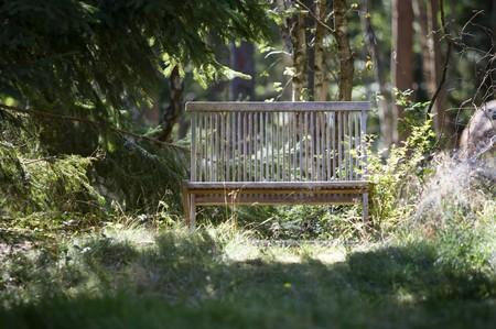 Landscape - Wood Bench