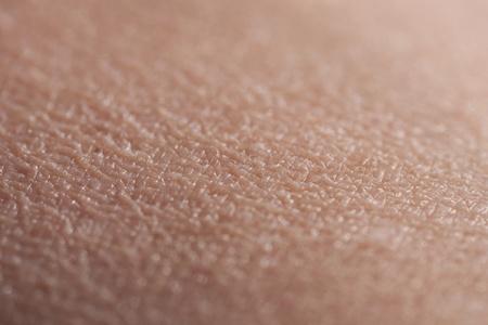 Brazo de superior de piel humana