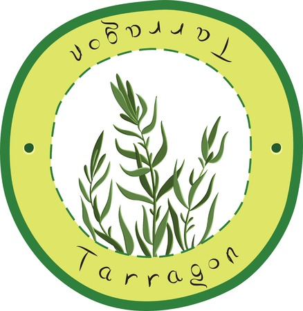 tarragon: Vector tarragon herb in the circle. Tarragon. Vector illustration Illustration