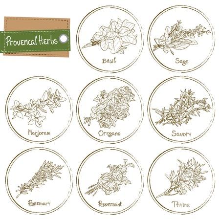 Provencal Herbs set. Provencal Herbs. Vector illustration Stock Illustratie