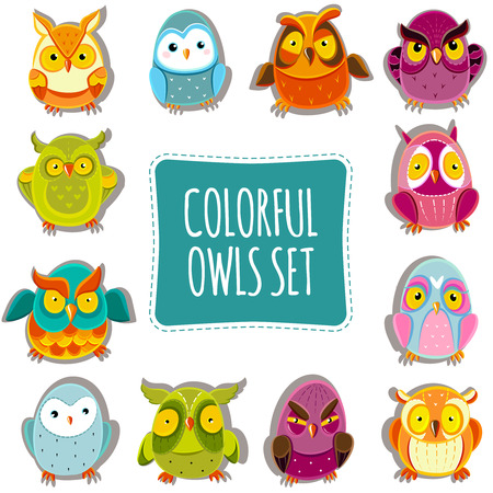 owl isolated: Colorful Vector Owls set. Vector Owls. Vector illustration