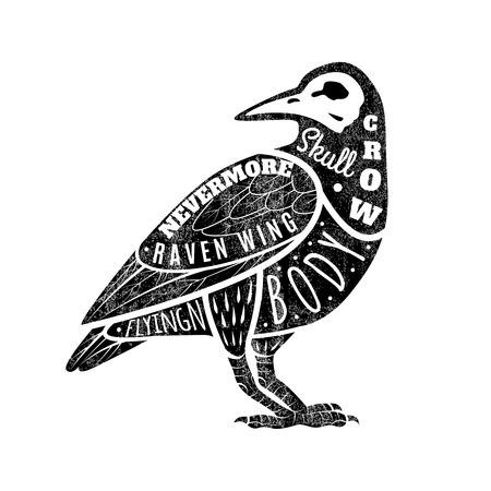cuervo: Tarjeta de felicitaci�n con el cuervo, con los patrones de las fuentes. Cuervo negro,. Ilustraci�n vectorial