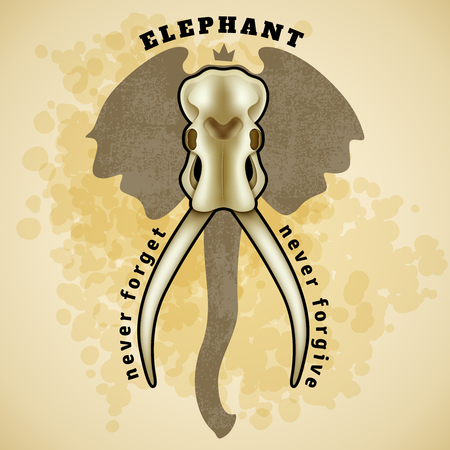biggest animal: Vector isolated Elephant skull. Vector Elephant Skull. Vector illustration